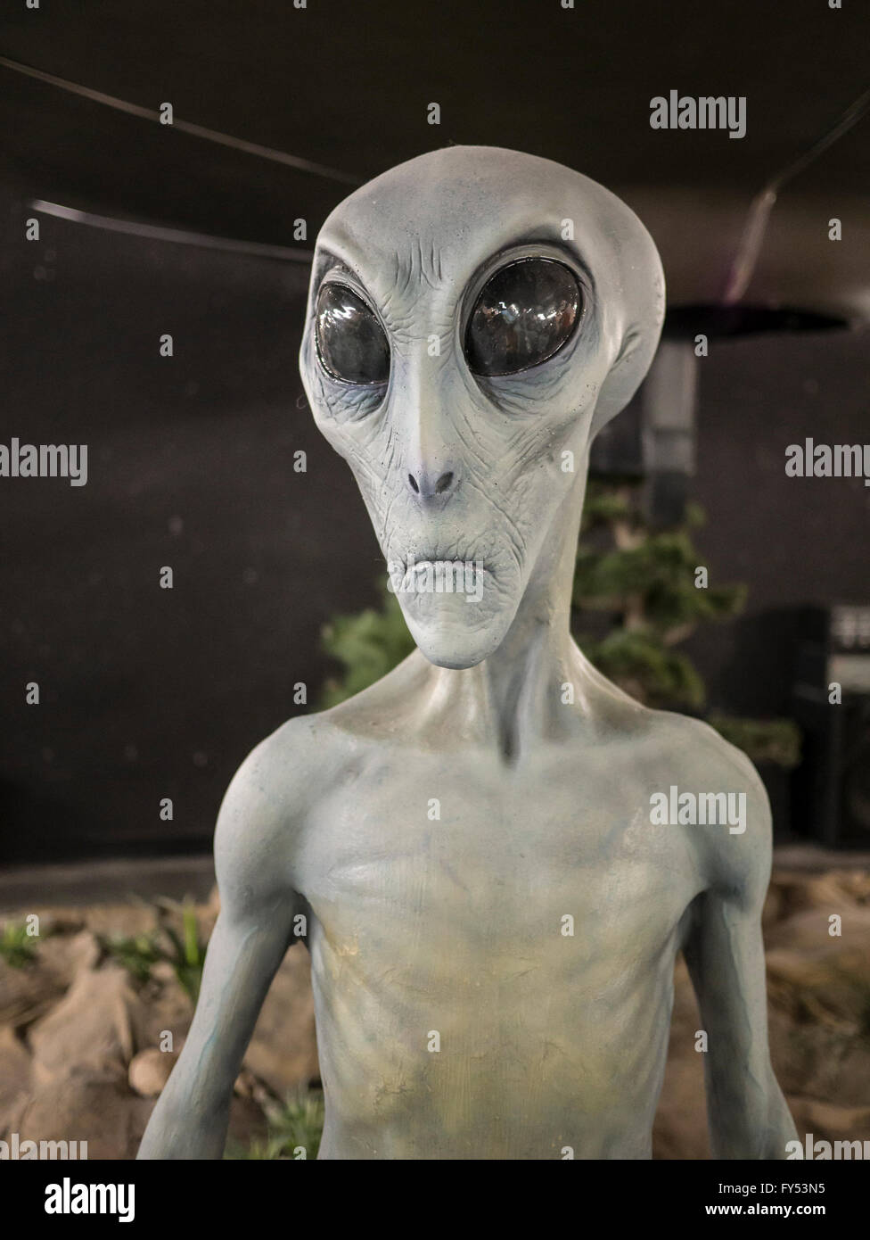 Alien mannequin, UFO Museum, Roswell, New Mexico. - Stock Image