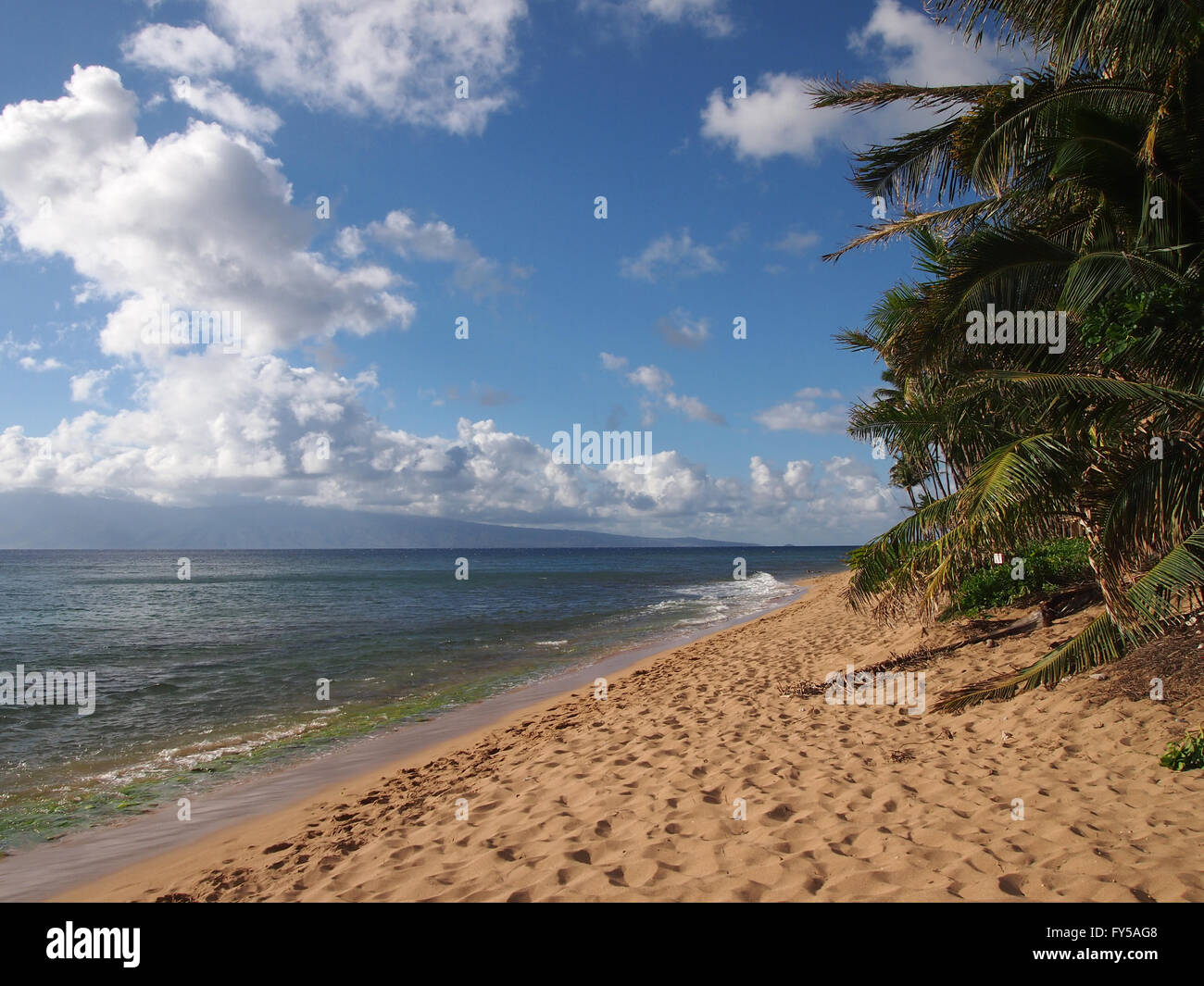 Kaanapali Beach with gentle waves and Coconut trees. Boat and Island of Molokai can be seen in the distance on Maui, - Stock Image