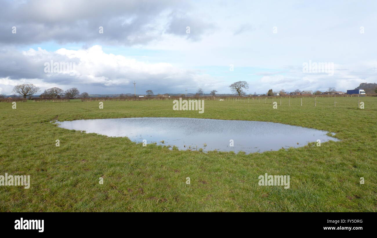 Seasonal pond in Cheshire - Stock Image