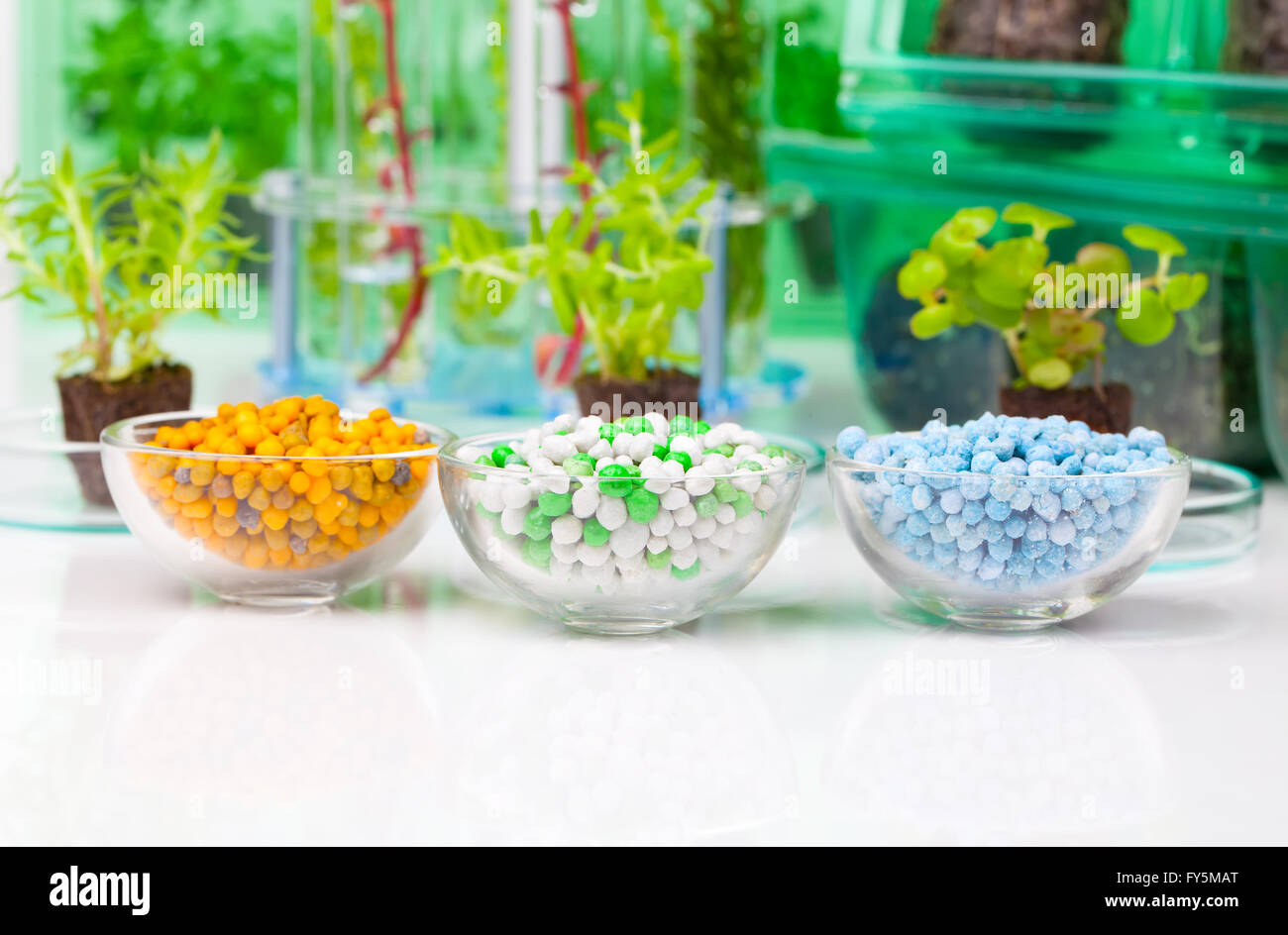 Different Mineral fertilizers in a chemical glass cup, on the white background - Stock Image