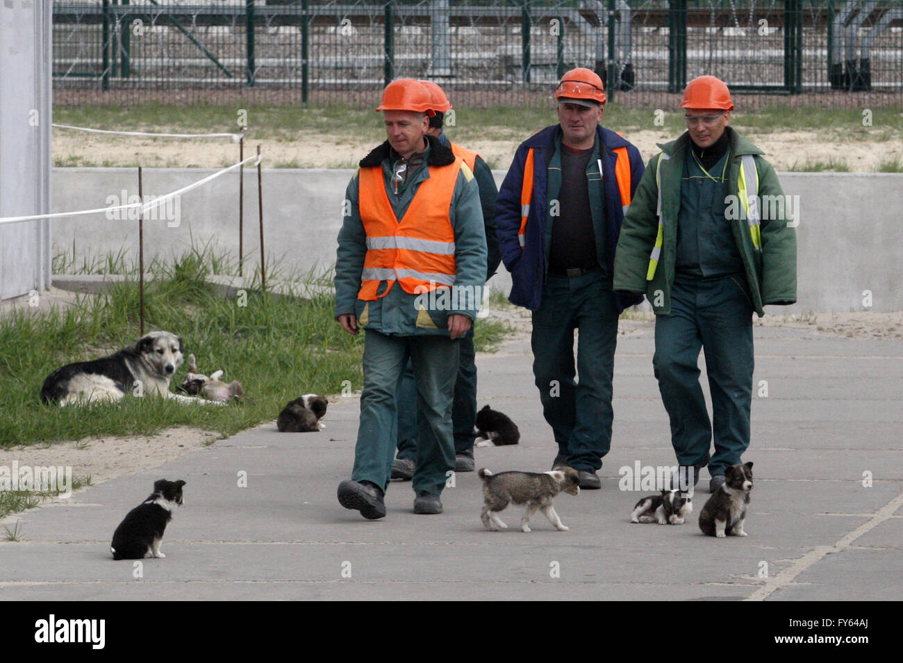 April 22, 2016 - Workers are seen near nuclear-fuel storage facility next to the Chernobyl Nuclear Power plant, - Stock Image