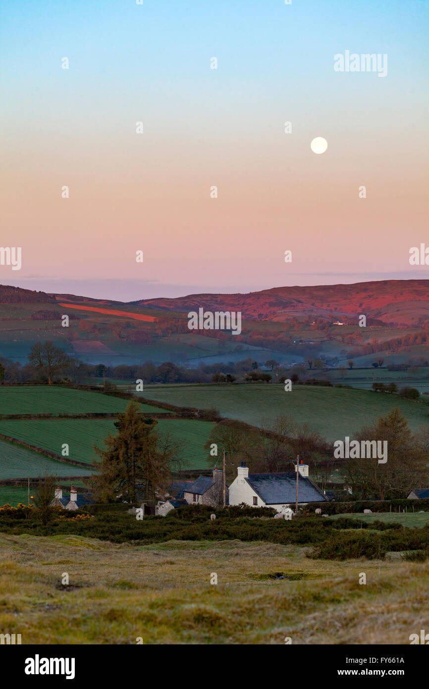 Flintshire, North Wales,  UK Weather- Arctic air pushes south over the UK leaving frost overnight as the sun rises Stock Photo