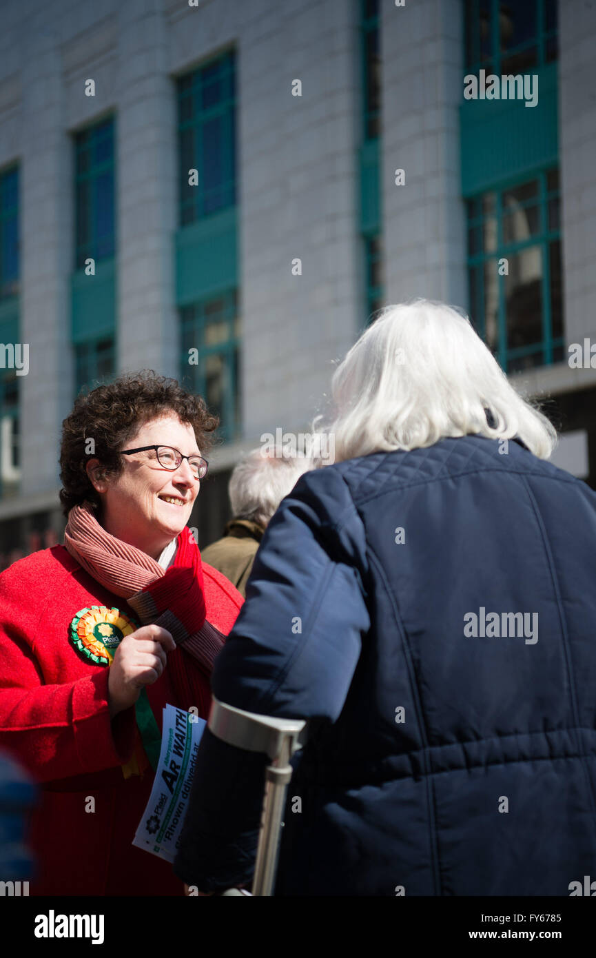 Aberystwyth Wales UK, Saturday 23 April 2016  ELIN JONES  the Plaid Cymru candidate for the 2016 Wales Assembly - Stock Image