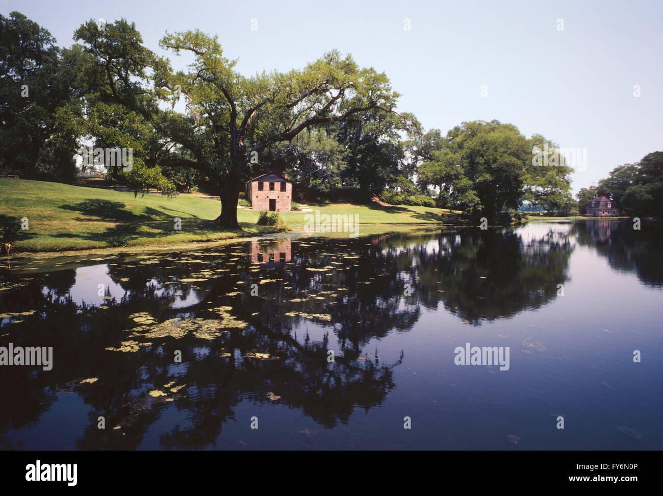PONDS; MIDDLETON PLACE; c1741; ORIGINALLY 50,000 ACRE RICE PLANTATION; CHARLESTON; SOUTH CAROLINA; USA - Stock Image