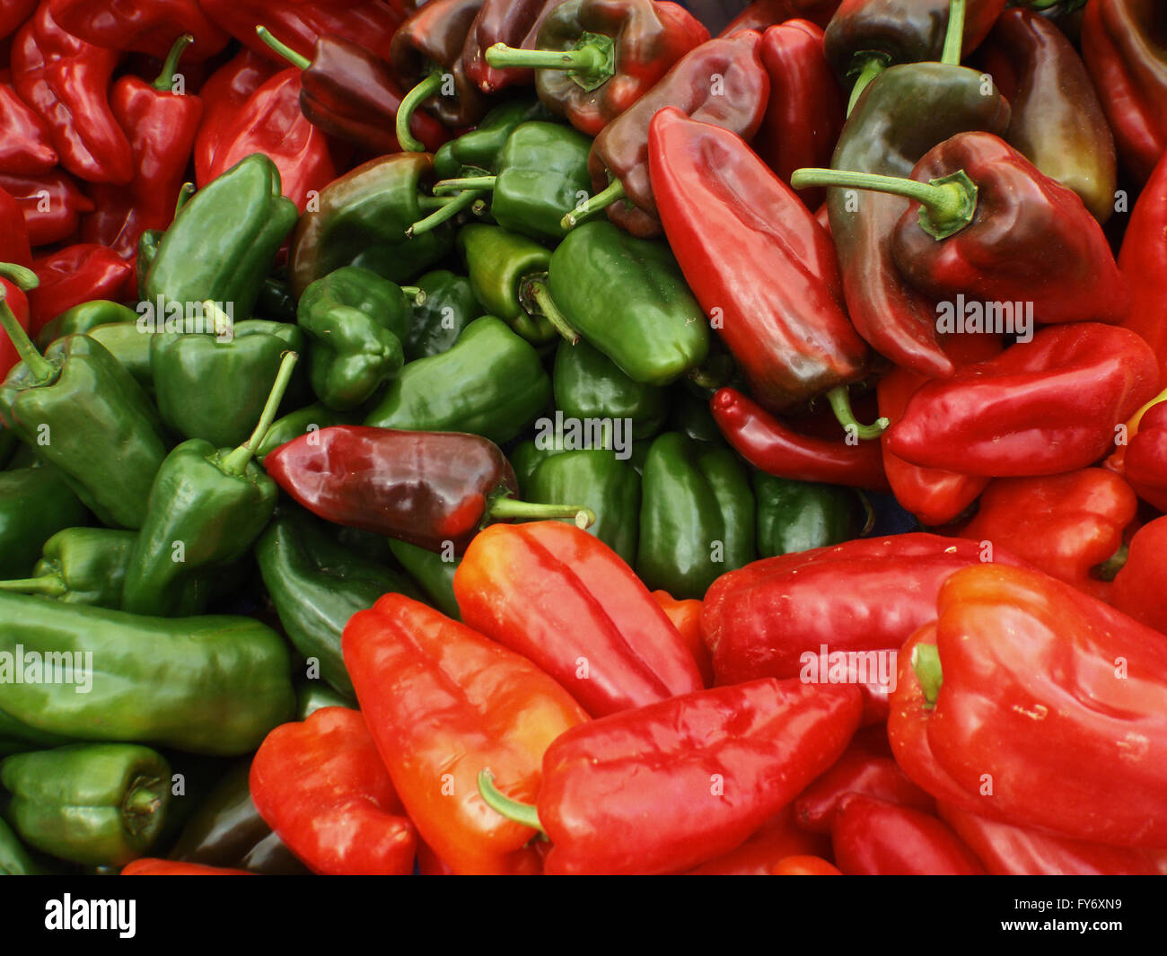 Large Red and Green Organic pointy Peppers on display at a farmers market in San Francisco - Stock Image