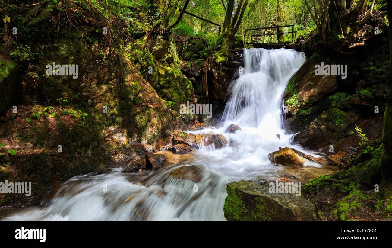 Long exposure of the Cabreia waterfall (Cascata da Cabreia), Serra da Cabrera, Sever do Vouga, Portugal - Stock Image