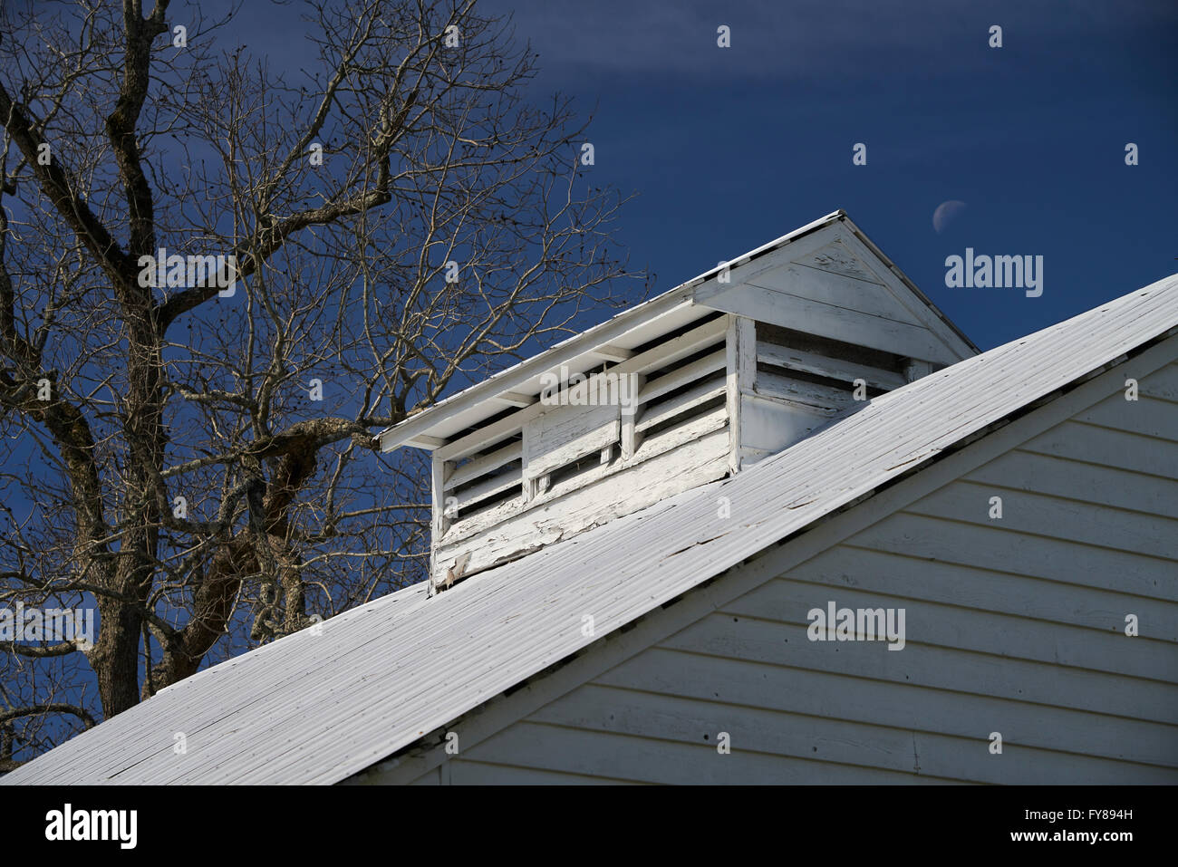 Moon, tree and white barn roof on Boon Hall Plantation in Charleston, South Carolina - Stock Image