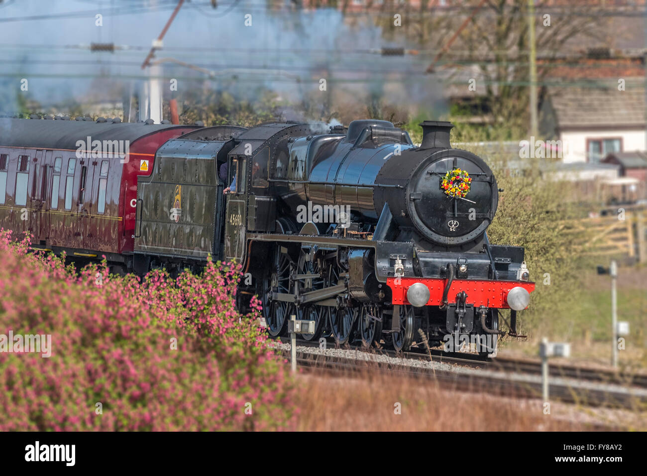 LMS Jubilee Class 6P 4-6-0 no 45690 Leander steam locomotive at speed with the Salopian Railtour passing Winwick - Stock Image