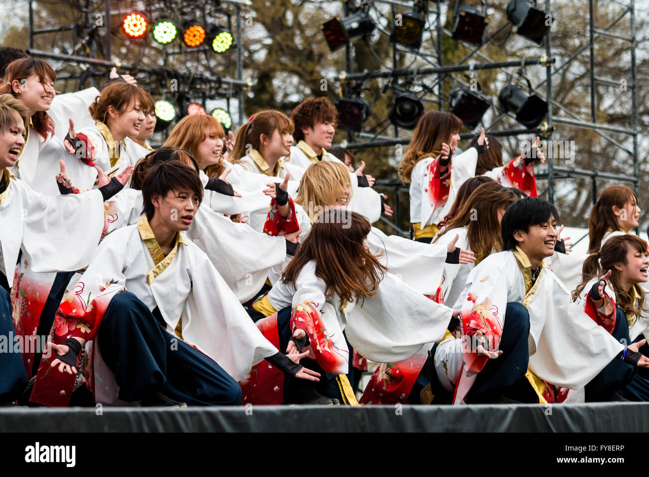 Yosakoi dance festival. Dancing troupe of your men and women dressed in yukata jackets, kneeling arms reaching out, - Stock Image