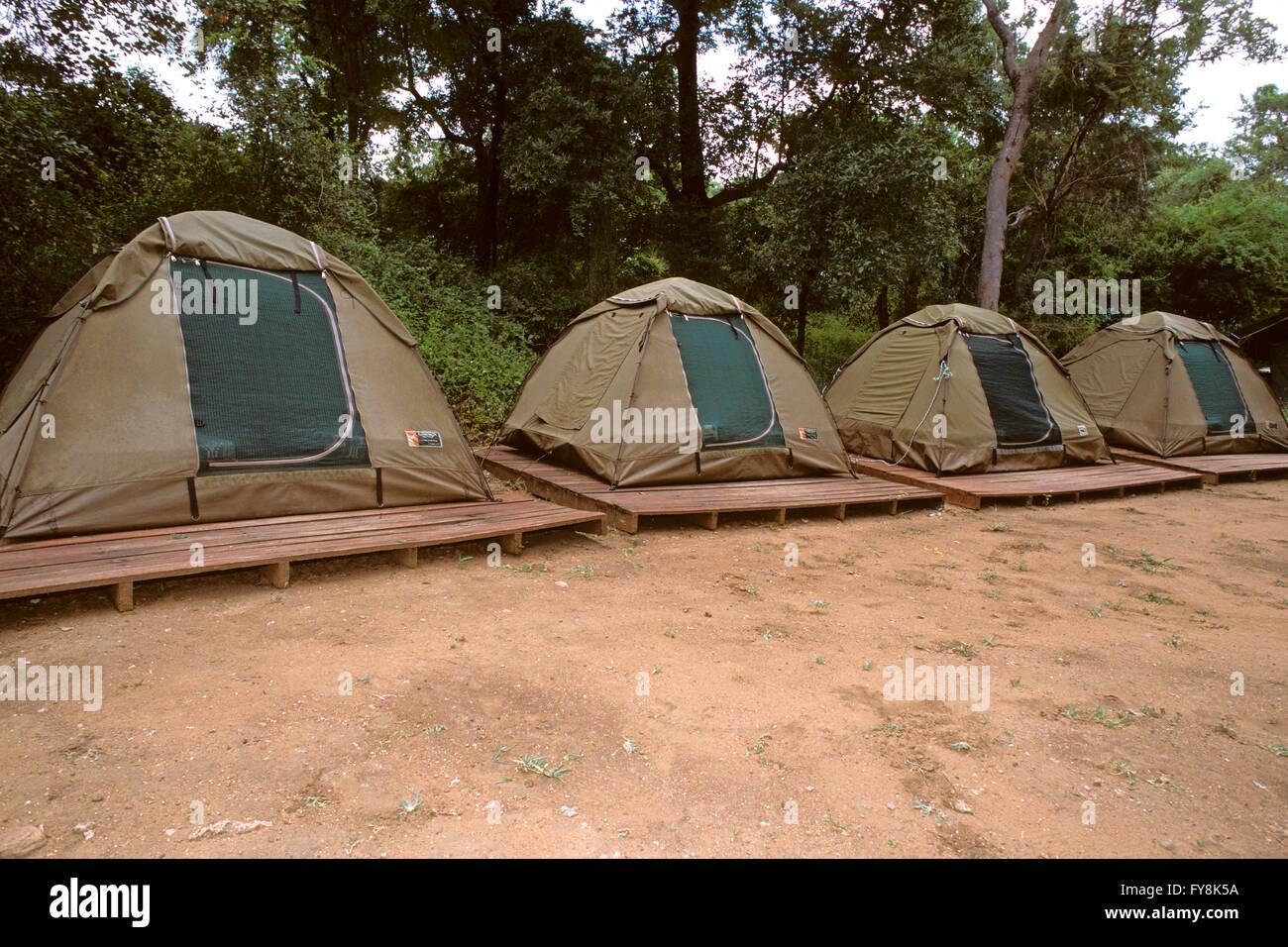 Tents at Berg-en-Dal Rest C& Kruger national Park South Africa & Tents at Berg-en-Dal Rest Camp Kruger national Park South Africa ...