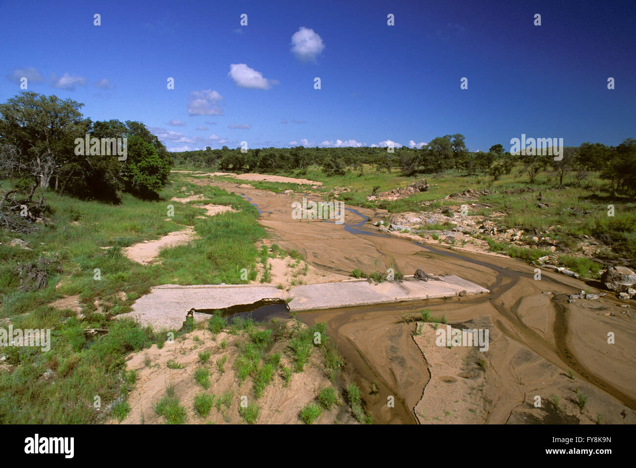 Dry river in the Kruger National Park, South Africa - Stock Image