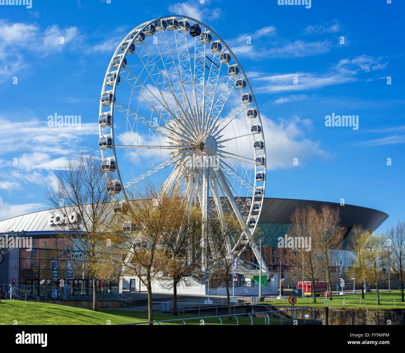 The Echo Arena and Wheel of Liverpool, Albert Dock area, Liverpool, Merseyside, England, UK - Stock Image