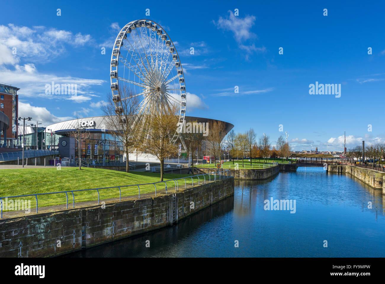 The Echo Arena and Wheel of Liverpool looking over Dukes Dock, Albert Dock area, Liverpool, Merseyside, England, - Stock Image