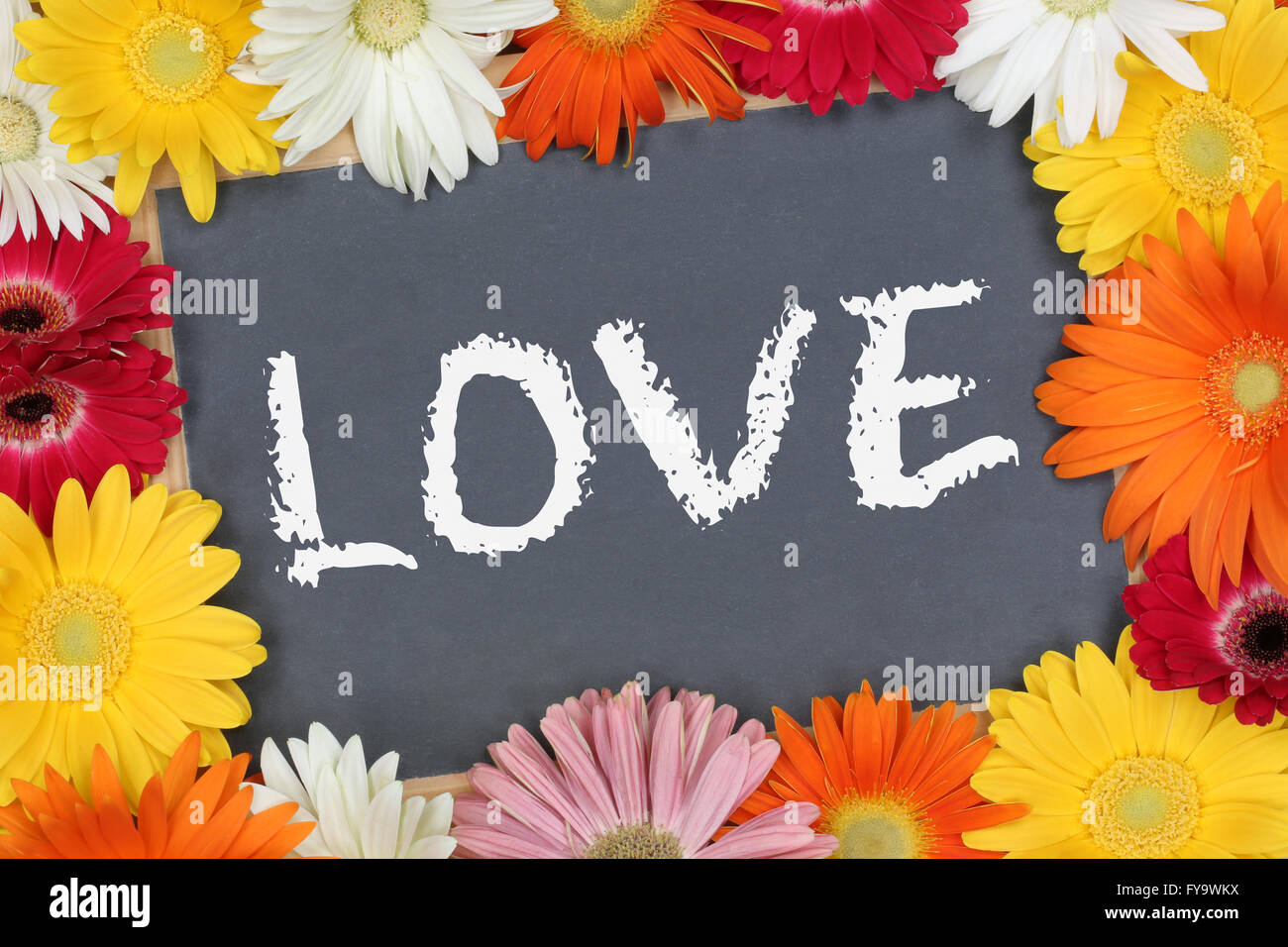 Love loving greeting card garden with colorful flowers flower board sign - Stock Image