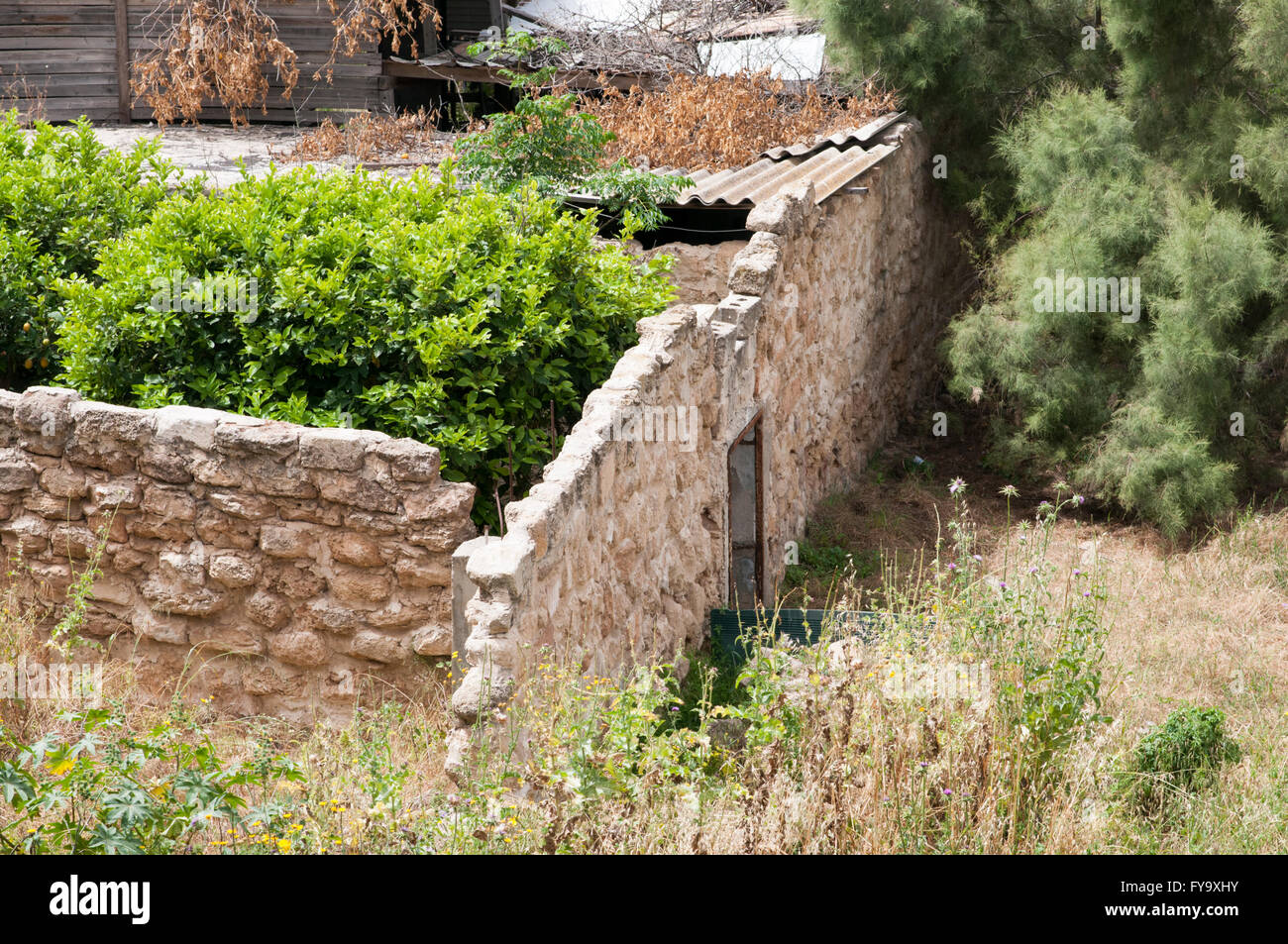Deserted and neglected house built from the local Kurkar stone (a calcareous sandstone or fossilized sea sand dunes - Stock Image