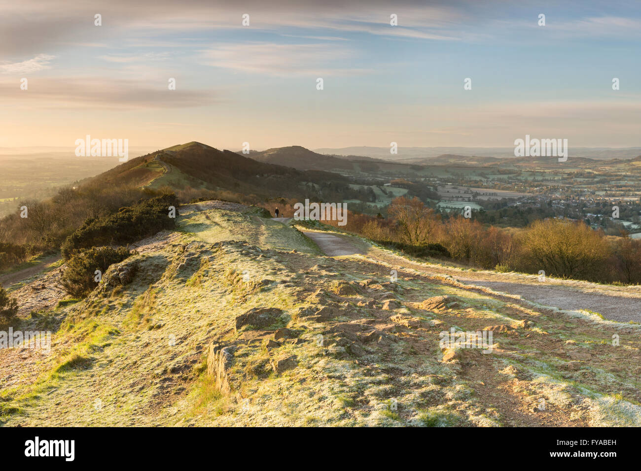 A walker walks their dogs along the footpath to the Beacon at Summer Hill, Malvern Hills, on a Frosty Winter Morning. Stock Photo