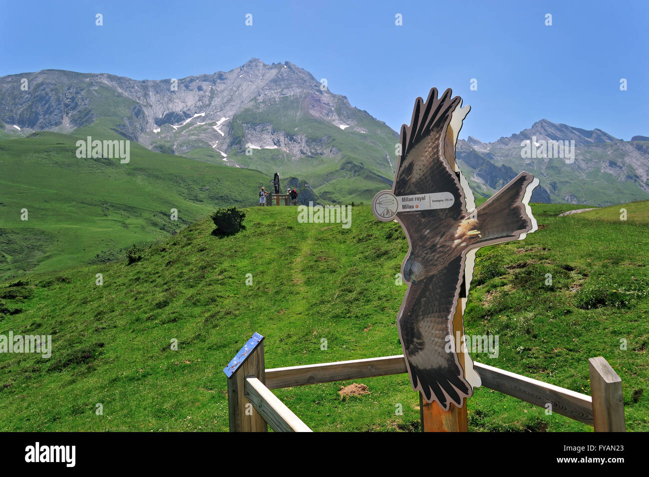 Viewpoint with sign depicting red kite (Milvus milvus) for watching birds of prey at the Col du Soulor, Hautes Pyrénées, - Stock Image