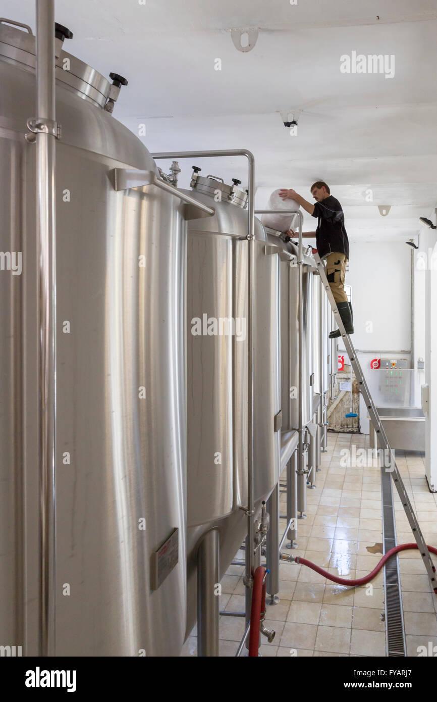 Brewer working in the Rise Brewery (Rise Bryggeri) on the Danish island of Aero, Denmark - Stock Image