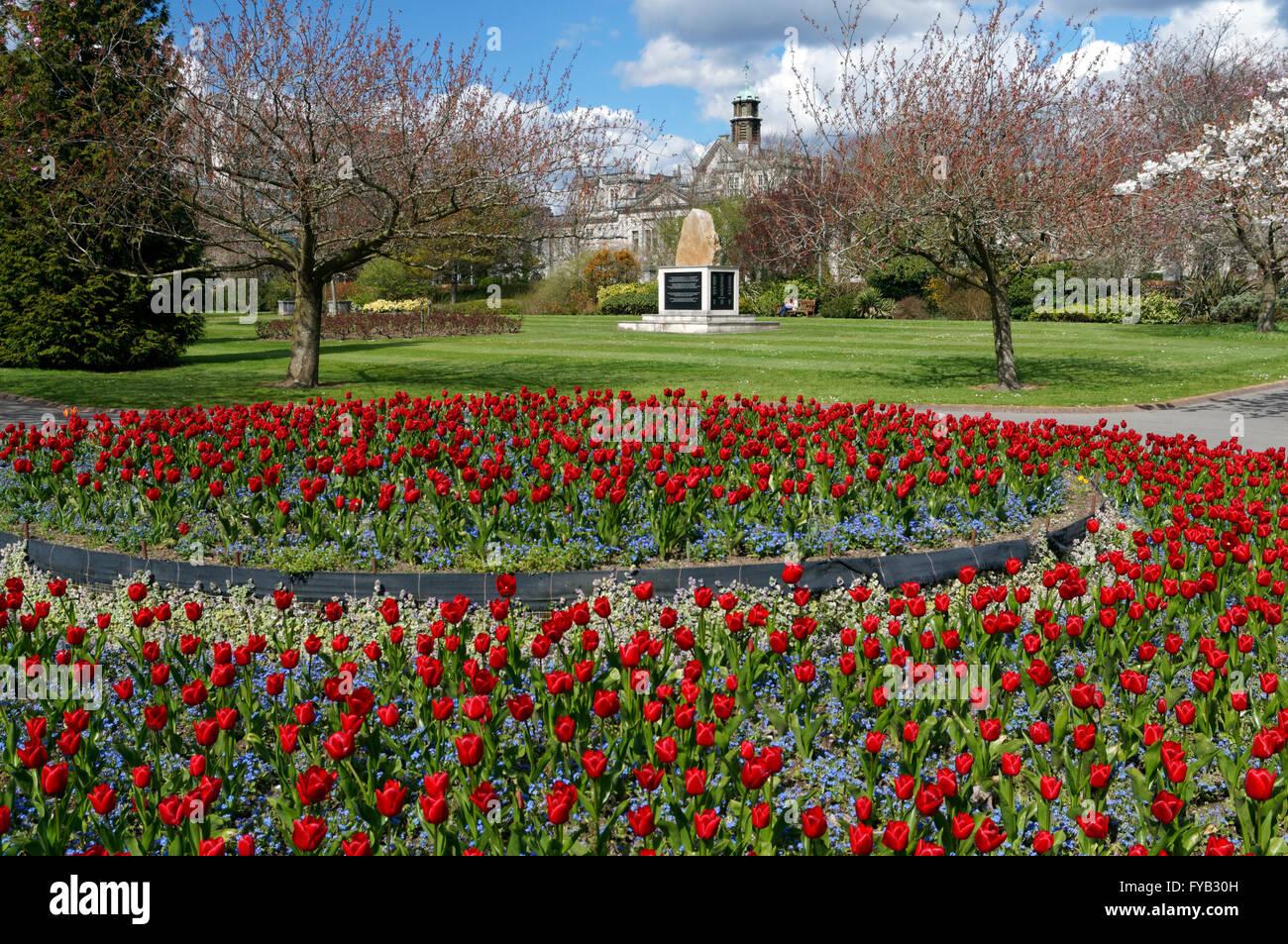 Falklands Gardens Stock Photos & Falklands Gardens Stock Images - Alamy