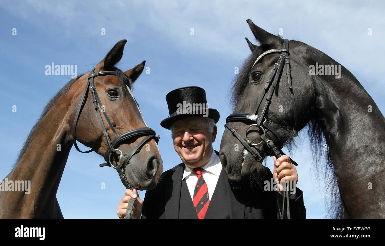 coachman with two beautiful horses - Stock Image