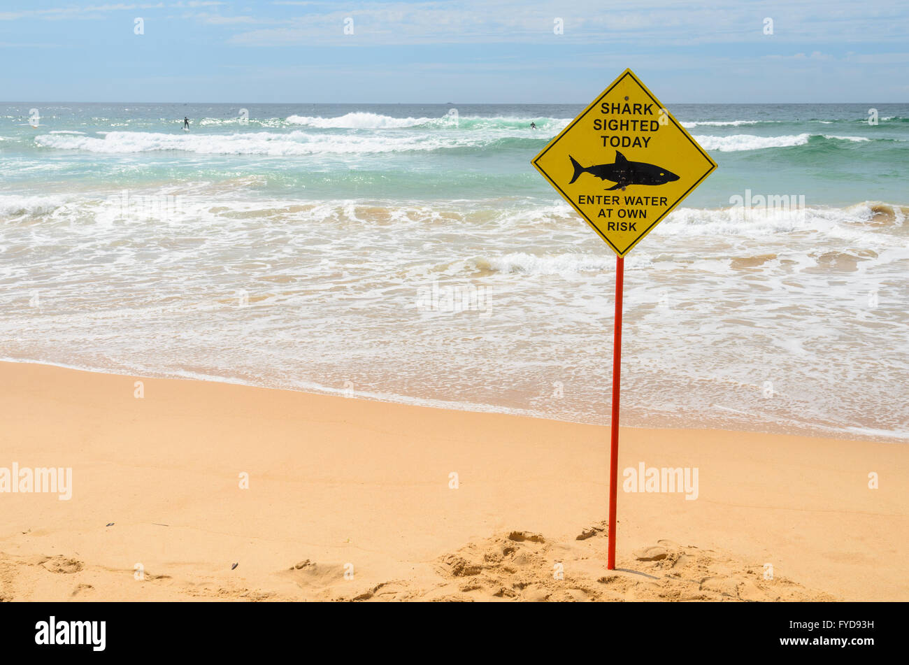 Shark Sighting sign at Manly Beach, Sydney - Stock Image