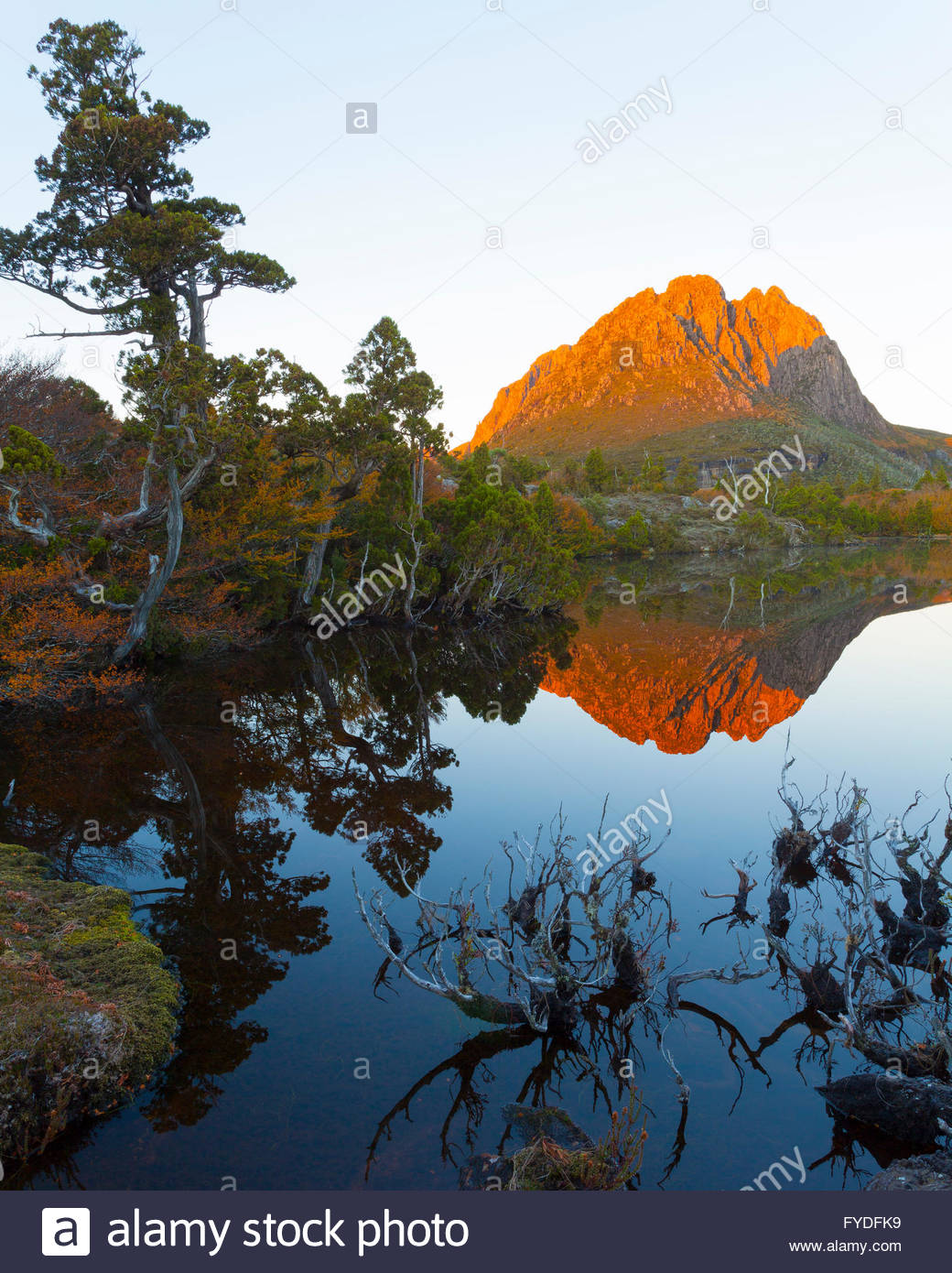 Little Horn from Twisted Lakes - Cradle Mtn Lake St Clair N.P - Tasmania - Stock Image
