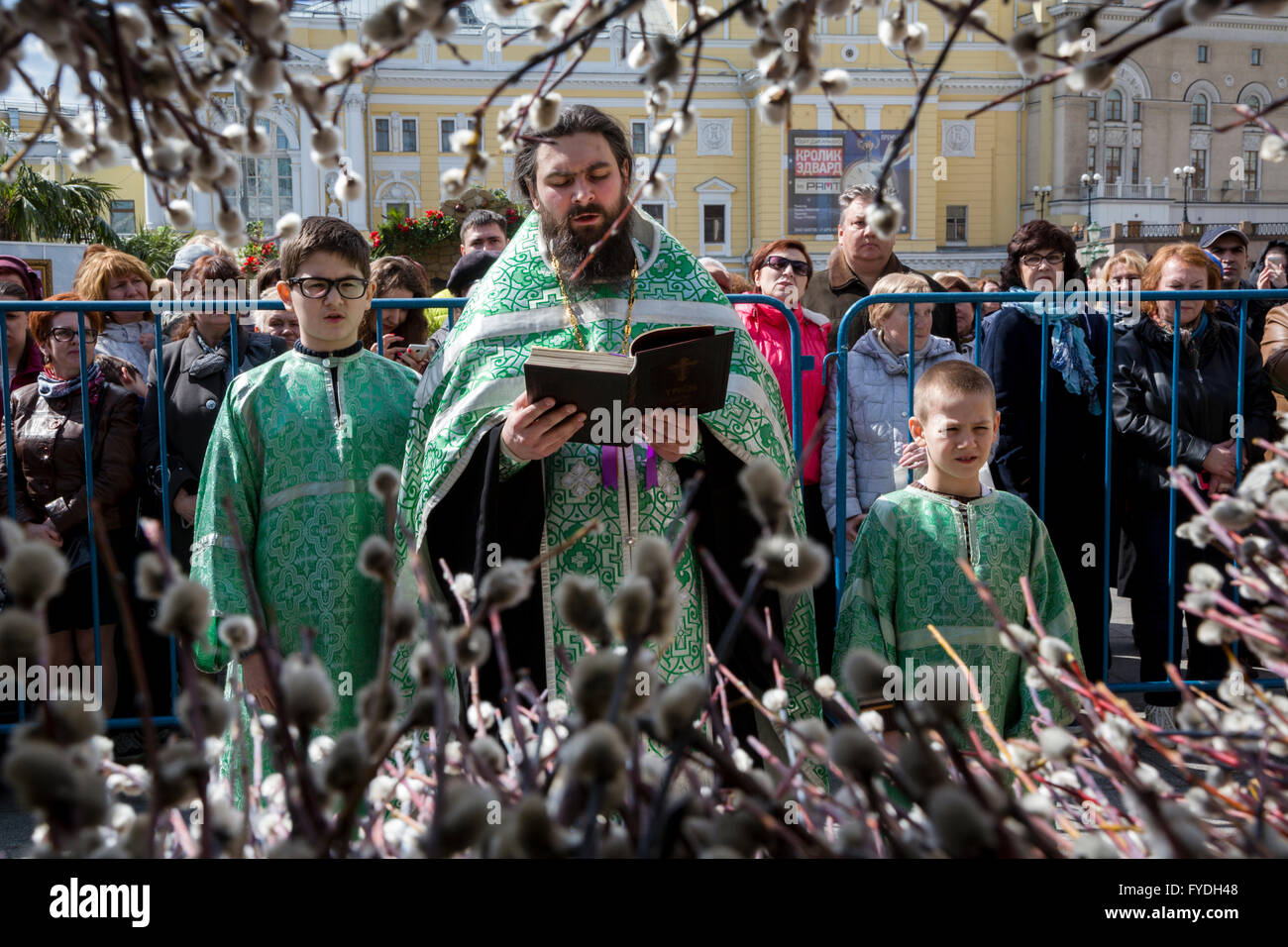 Moscow, Russia. 24 April, 2016. Five thousand consecrated willow bouquets presented to visitors on Theater square - Stock Image