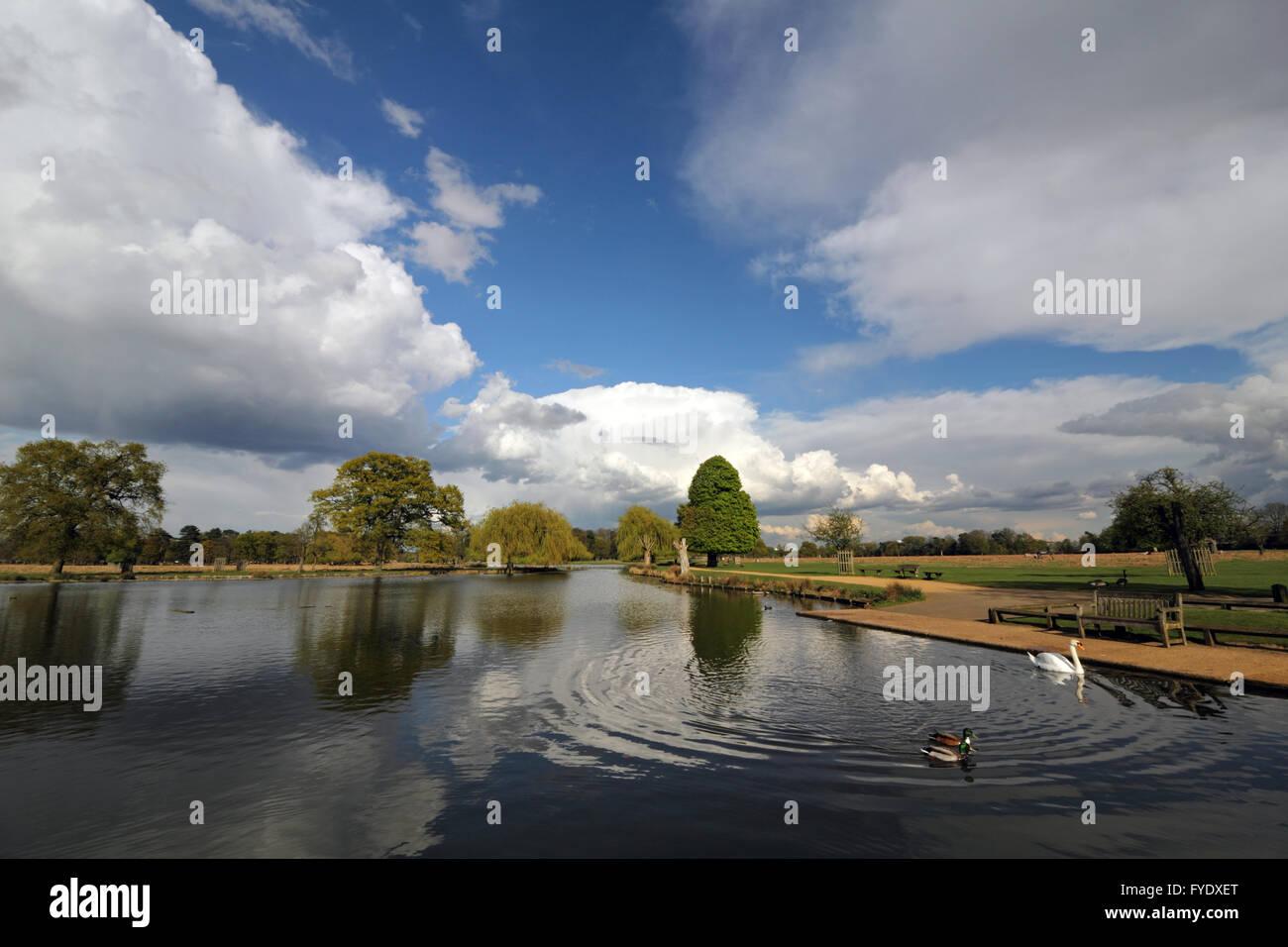 Bushy Park, London, UK. 26th April 2016. UK Weather: Huge cumulonimbus clouds pass over the Heron Pond in Bushy - Stock Image