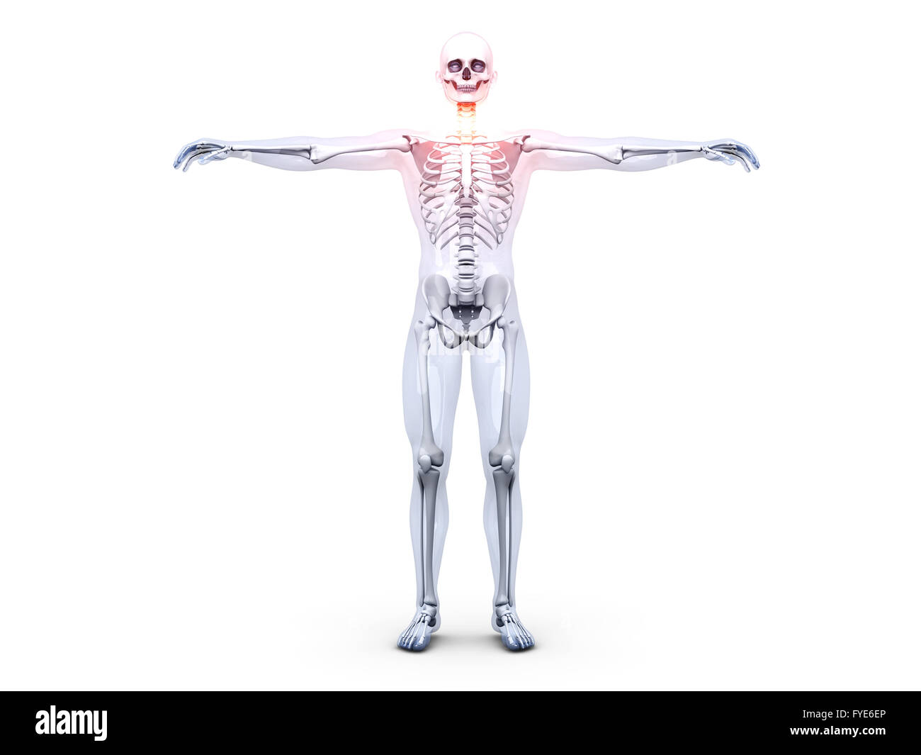 Sore Throat - Anatomy Stock Photo: 102959998 - Alamy