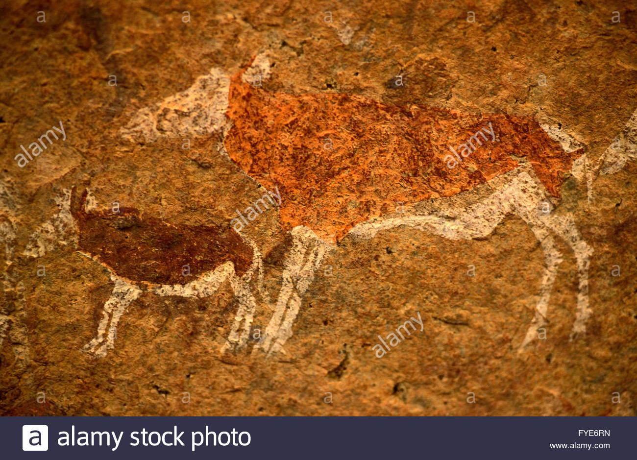 A Bushman (San) rock carving Brandberg Mountains Namibia - Stock Image
