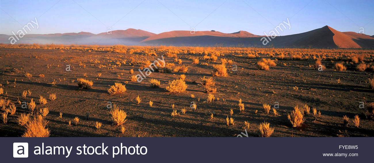 Namib landscape, Naukluft national park Namibia. - Stock Image