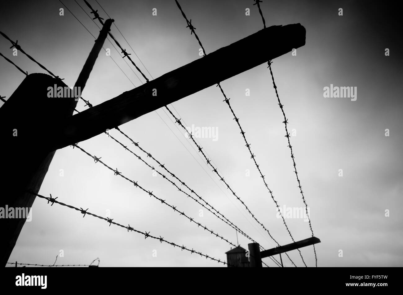 Prison. Barbed wire fence. Black and white - Stock Image