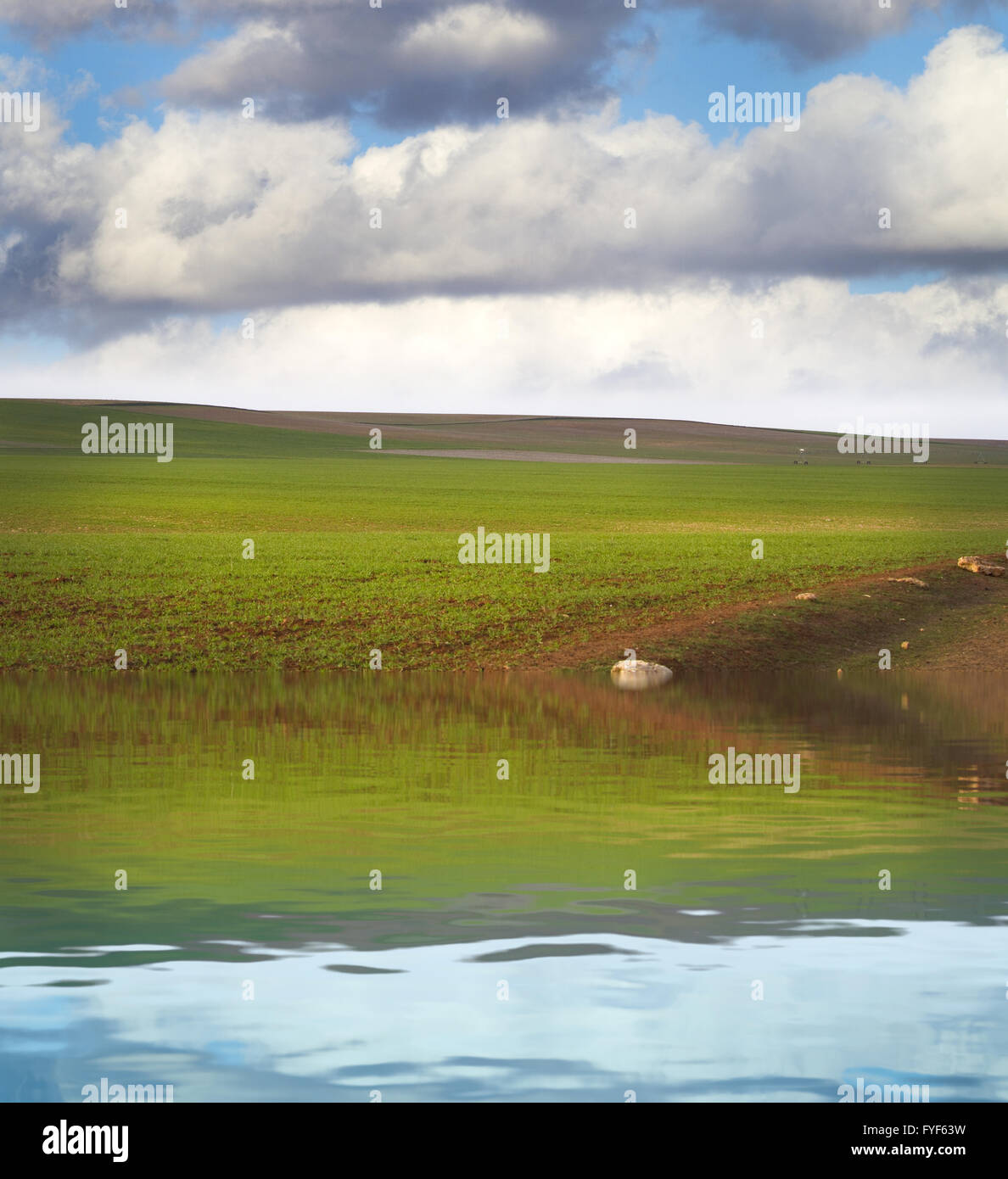 Green nature, Spanish Agriculture field with water reflection Stock Photo