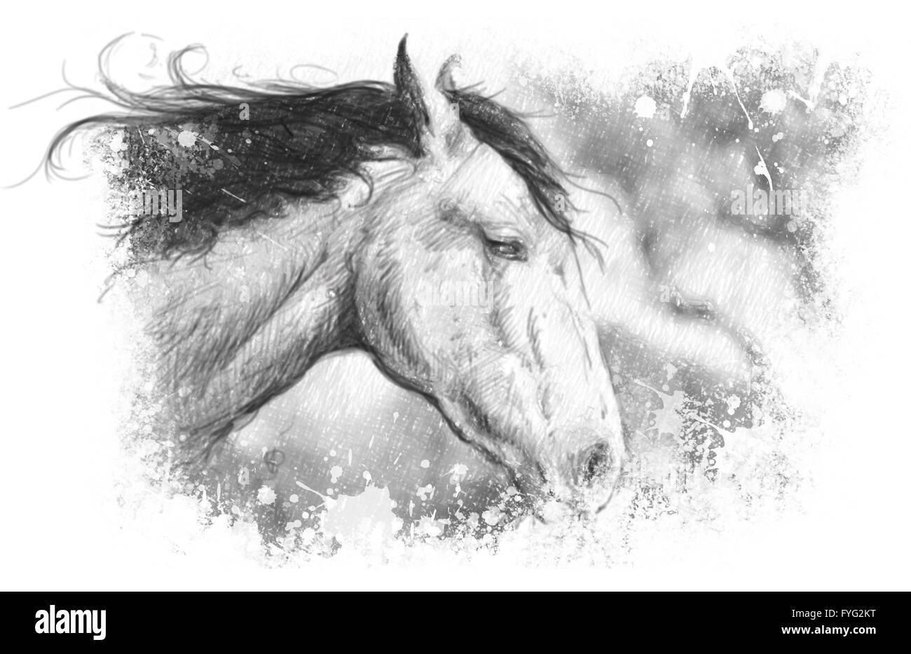 Horse illustration, tattoo art, sketch - Stock Image