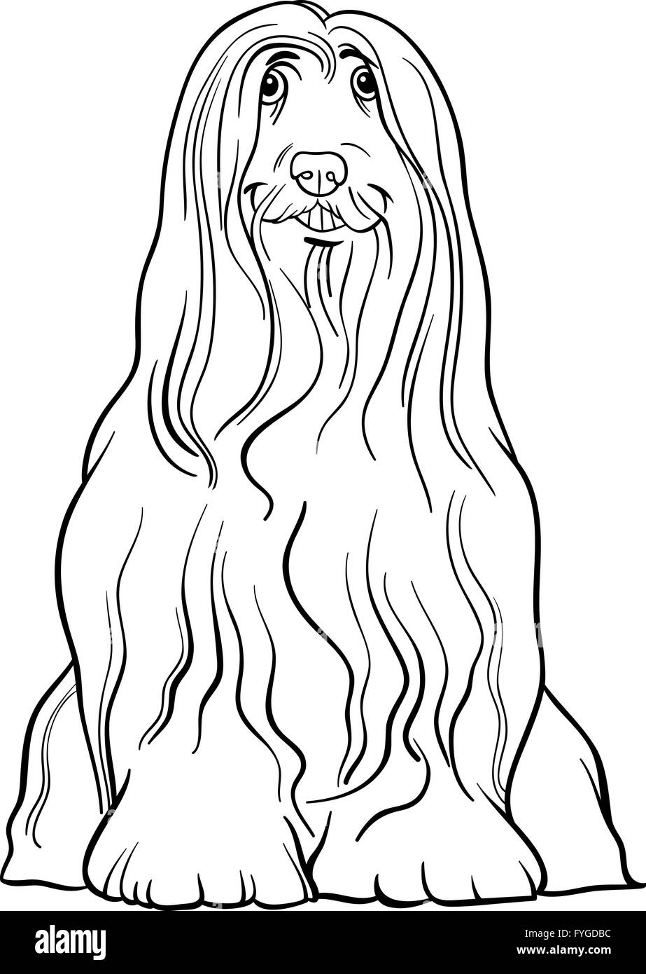 bearded collie dog cartoon for coloring - Stock Image