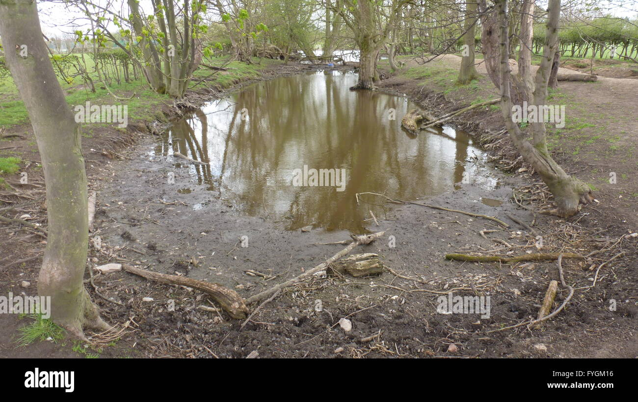 linear pond Cheshire UK without vegetation and drying - Stock Image