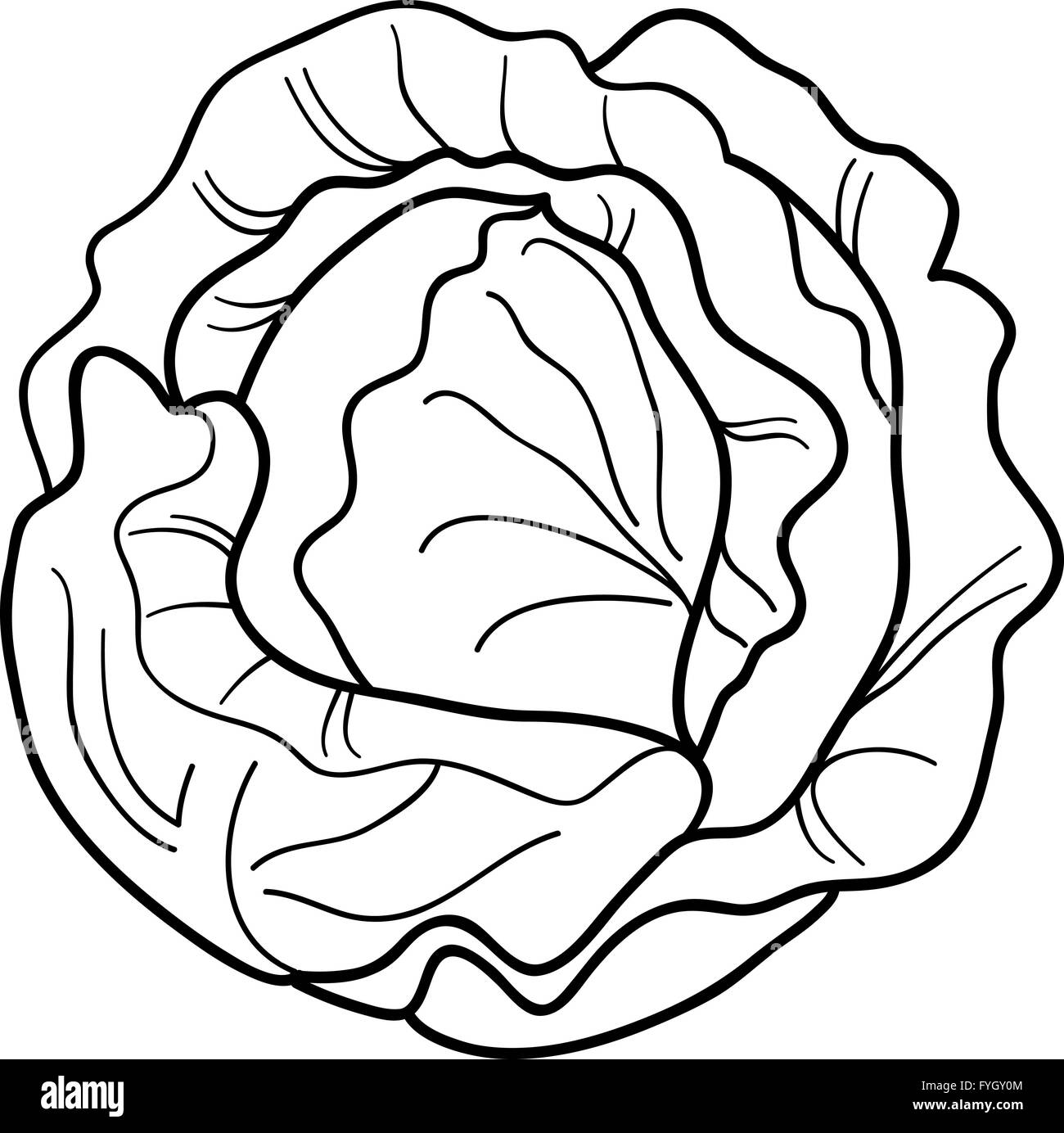 Cabbage Vegetable Cartoon For Coloring Book Stock Photo 103019972