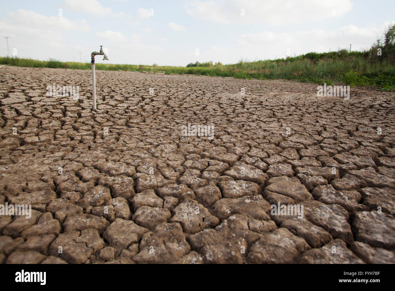 environmental concept, Water shortage and drought Dry cracked mud with a water faucet - Stock Image
