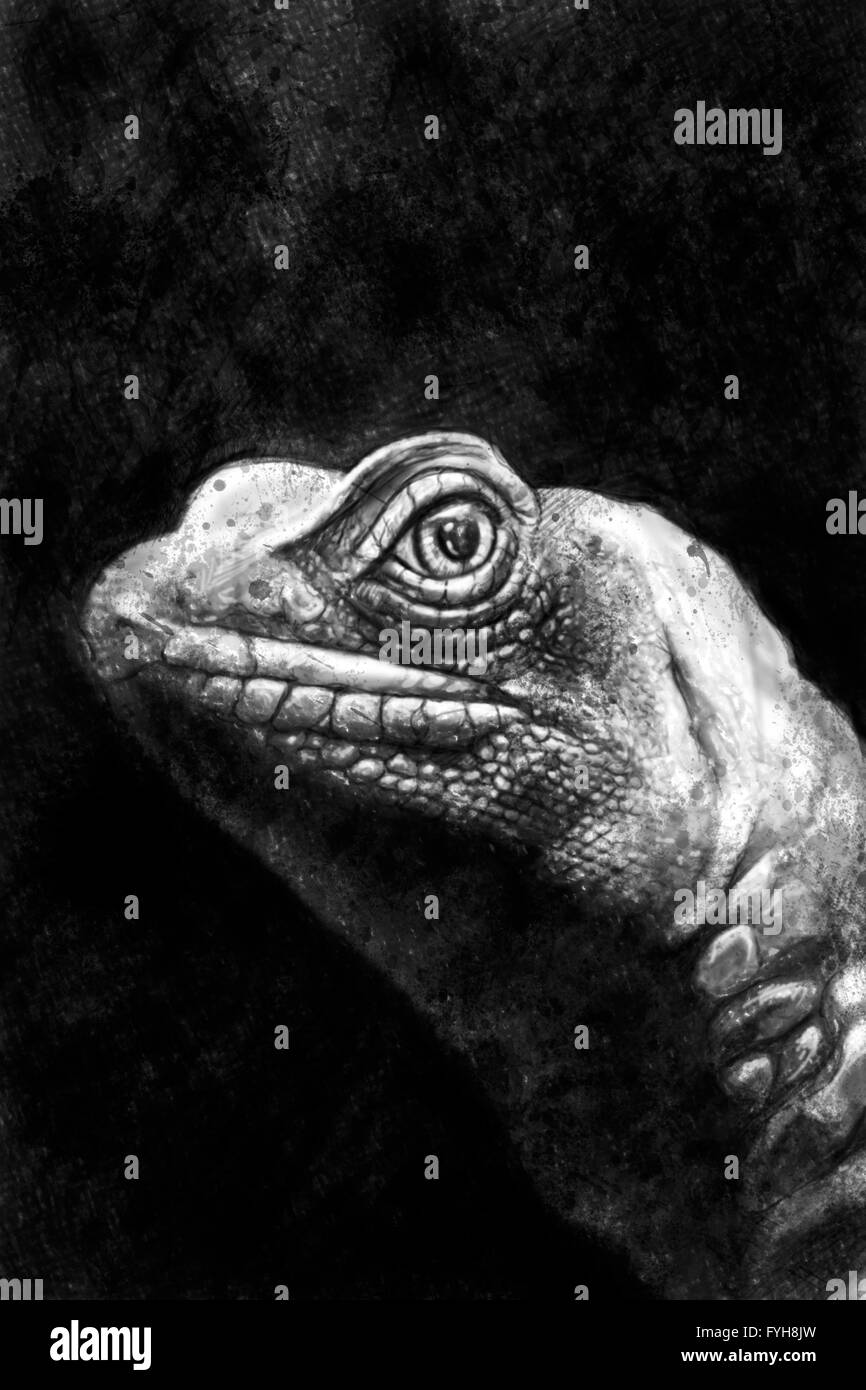 Iguana illustration handmade drawing with artistic textures - Stock Image