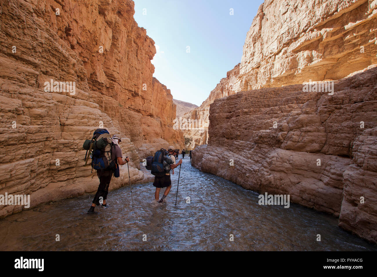Wadi Zered (Wadi Hassa or Hasa) in western Jordan. A sand stone canyon with frash running water - Stock Image