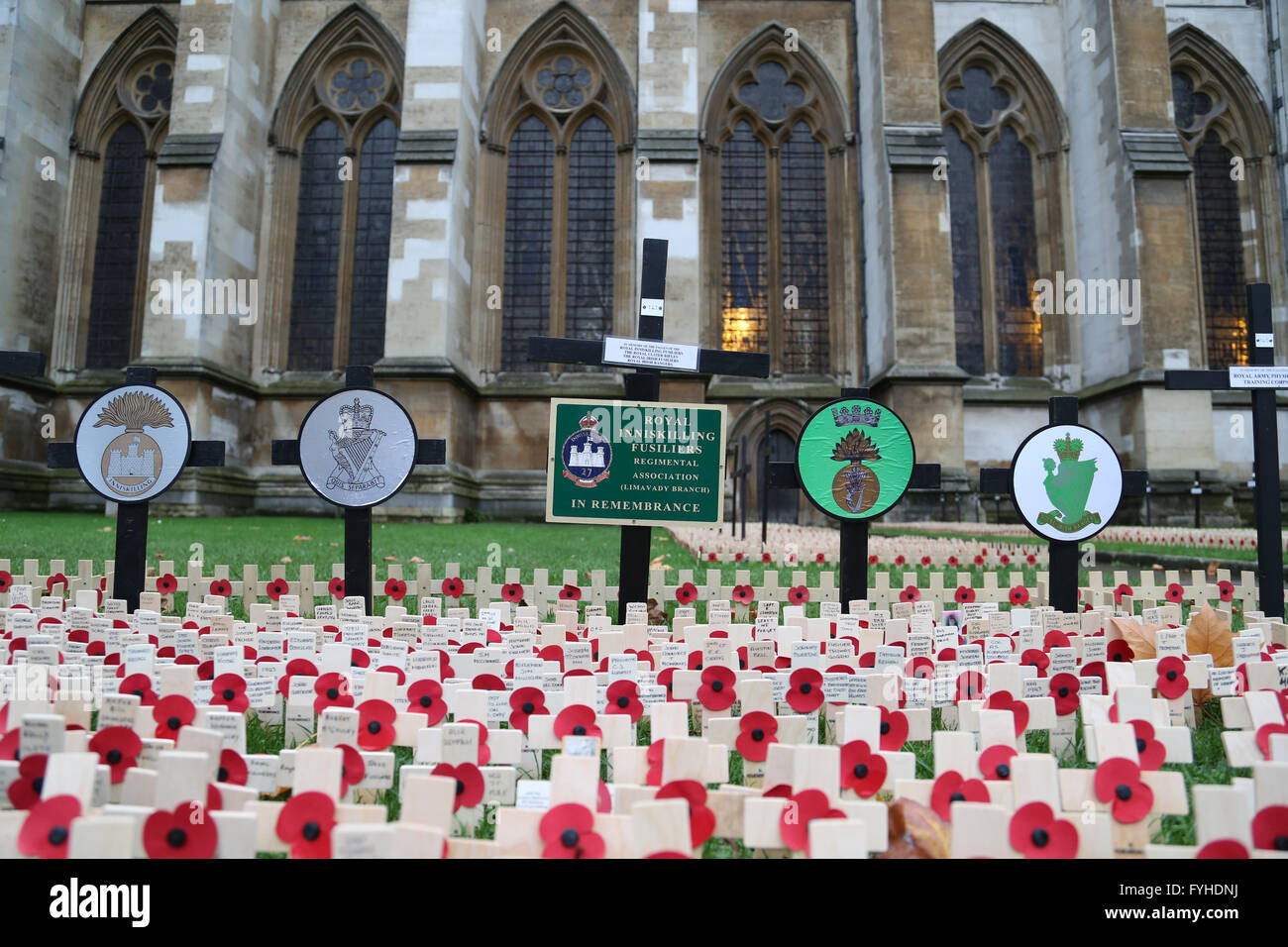 Poppy Day at Westminster Abbey, where UK celebrates and mourns its fallen military heroes with thousands of poppys. - Stock Image