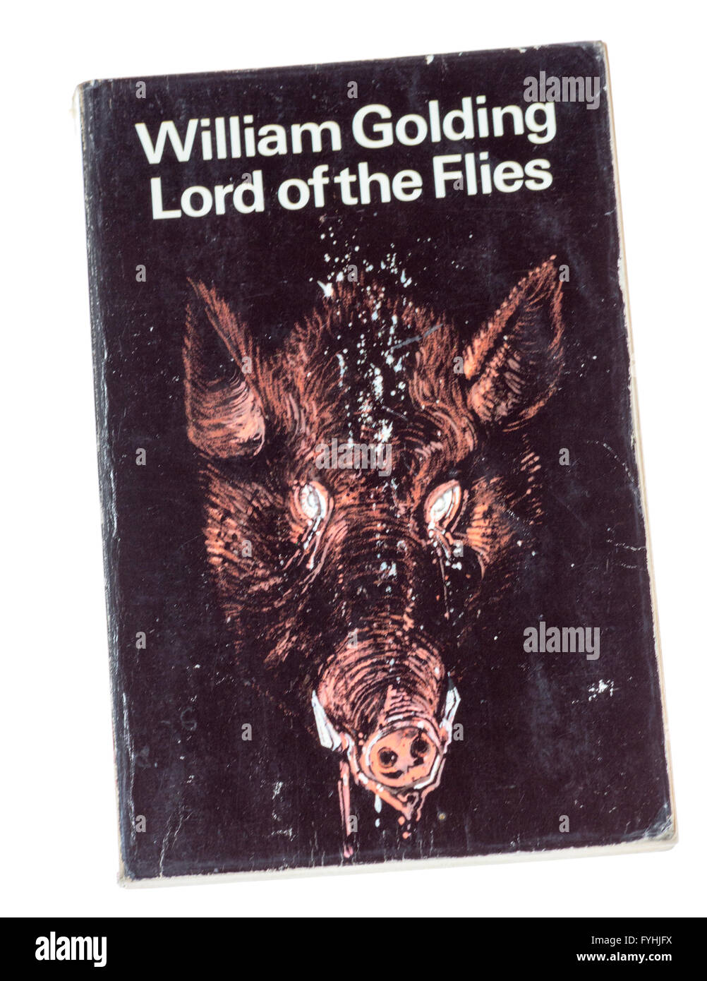 William Golding Lord Of The Flies Paperback Book Cover Stock Photo