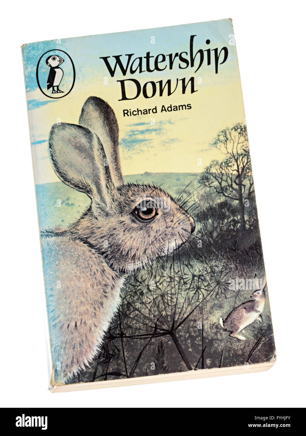 Richard Adams Watership Down paperback book cover - Stock Image