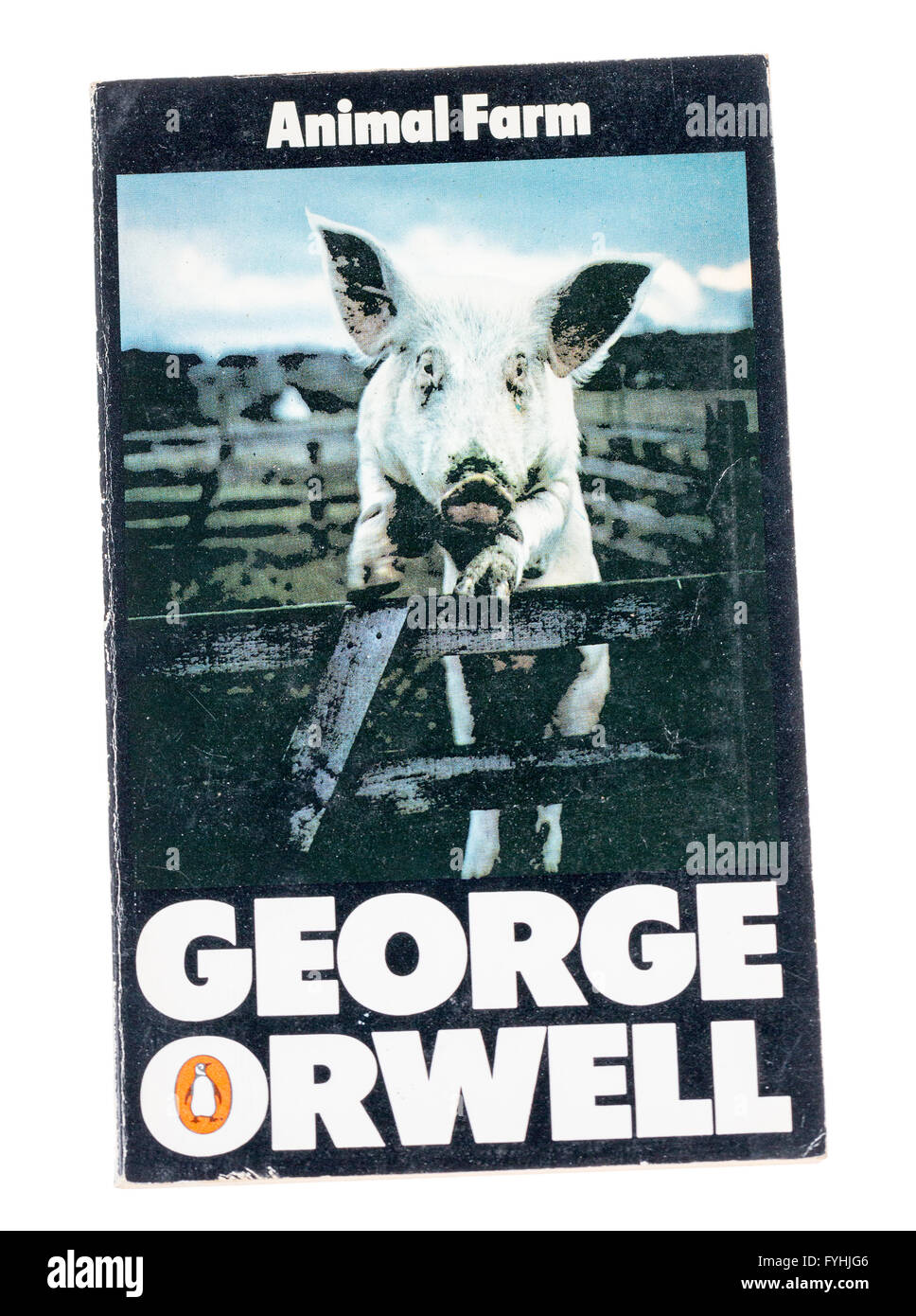 George Orwell Animal Farm paperback book published by Penguin - Stock Image