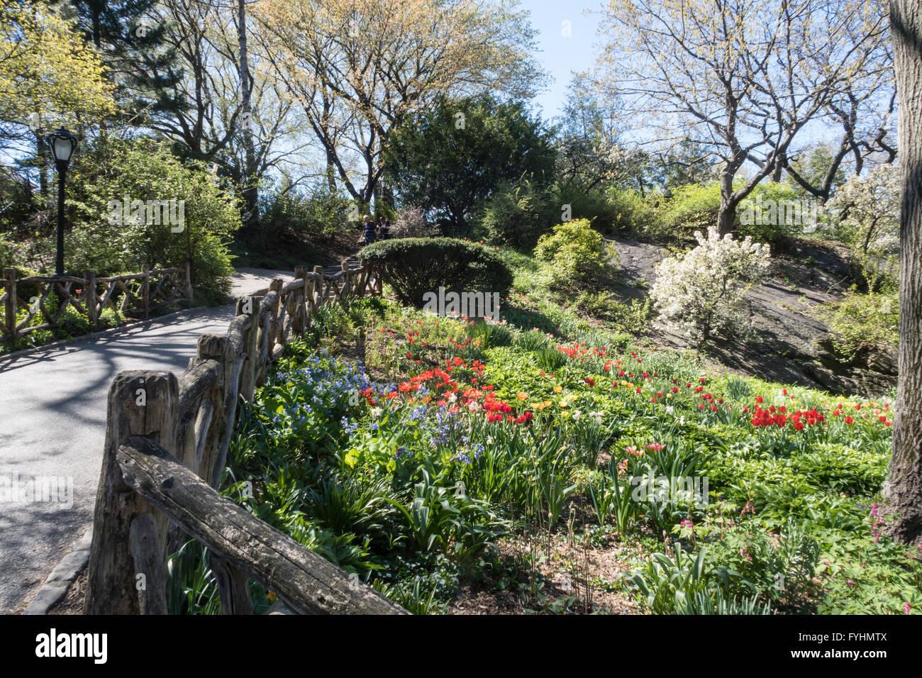 shakespeare garden central park nyc - Shakespeare Garden Central Park