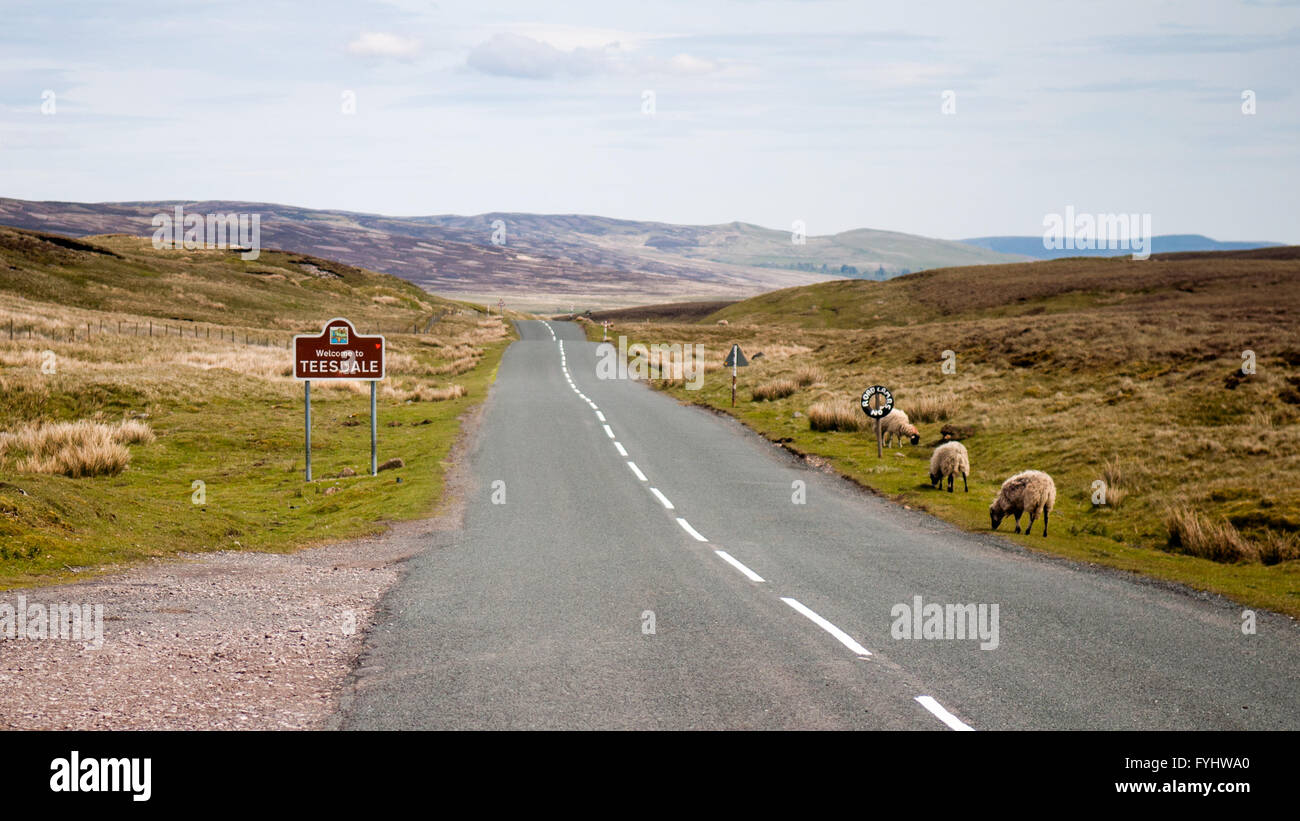 A sign welcoming travelers to the Teesdale district of County Durham on remote moorland in Northern England. - Stock Image