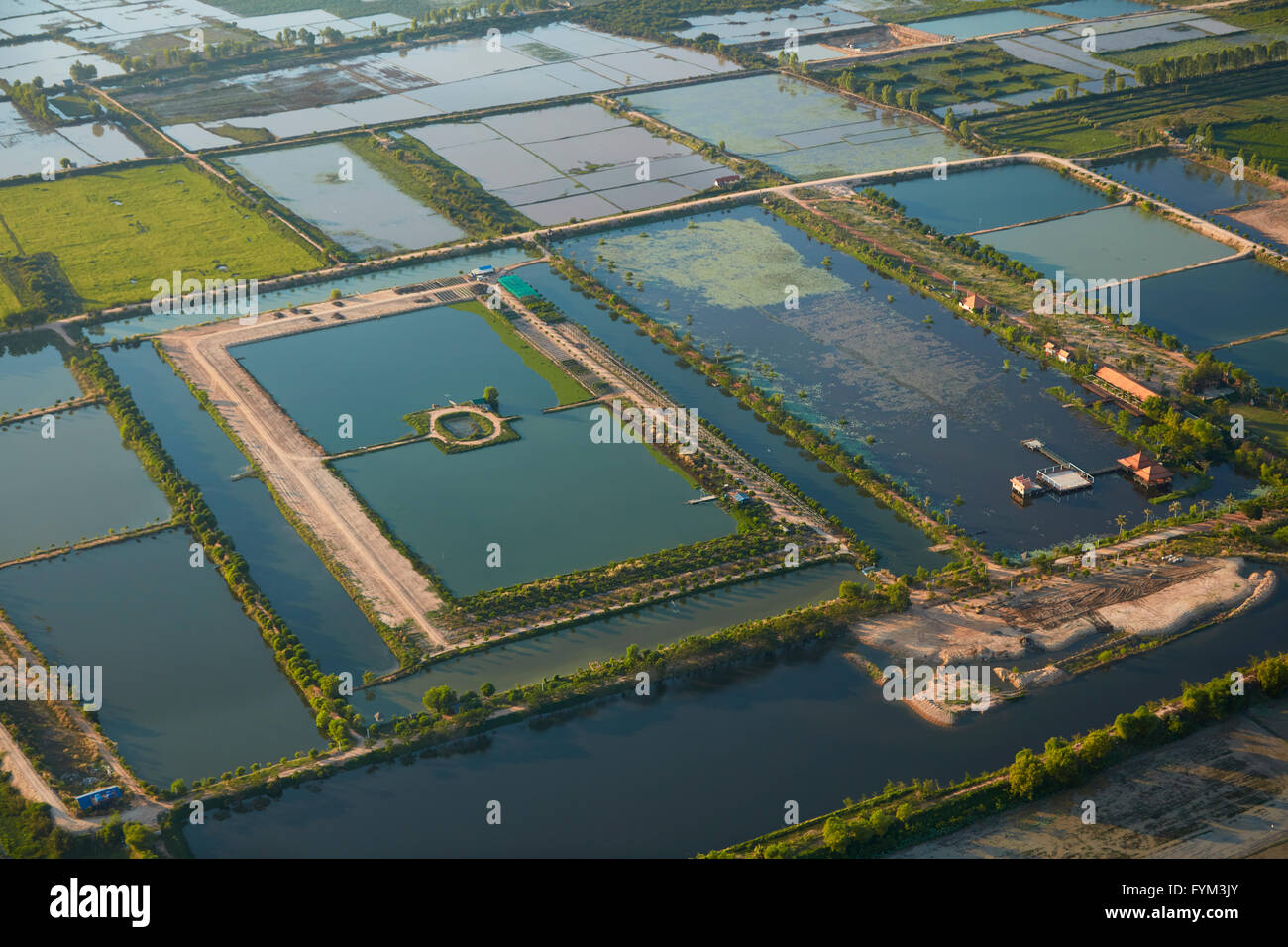 Rice paddies and ponds in new development near Siem Reap, Cambodia - aerial - Stock Image