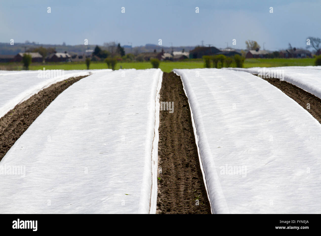 Using satellite navigation systems during planting and seeding using a  seeder/planter with a tractor.  Field machines - Stock Image
