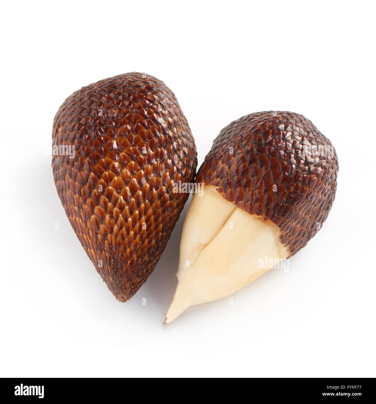 High Angle Still Life of Exotic Salak Palm Fruit on White Background - One Unpeeled Fruit with Brown Scaly Skin - Stock Image