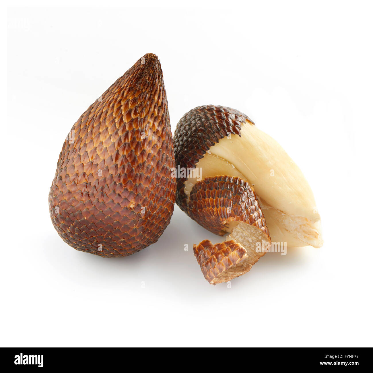 Close Up Still Life of Exotic Salak Palm Fruit on White Background - One Unpeeled Fruit with Brown Scaly Skin and - Stock Image